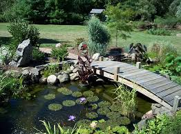Ideas For A Small Backyard Small Backyard Fish Pond Ideas Pool Design Ideas