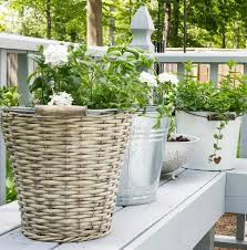 vintage container herb garden on sutton place