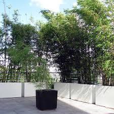 rectangular planter box 39