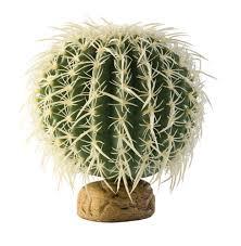 desk cactus amazon com exo terra barrel cactus terrarium plant medium pet