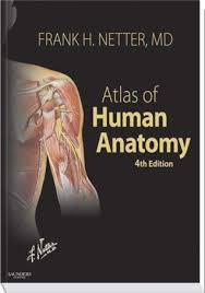 Fundamentals Of Anatomy And Physiology 6th Edition Atlas Of Human Anatomy By Frank H Netter
