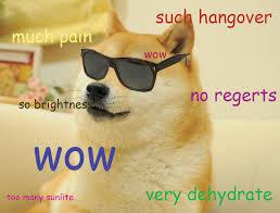 Funniest Doge Meme - so drink many hungovre doge humor and meme