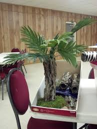 90 best palm trees oasis images on pinterest palm trees palms