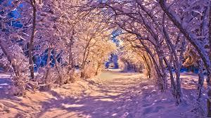 nature landscapes winter snow christmas sidewalk roads lights