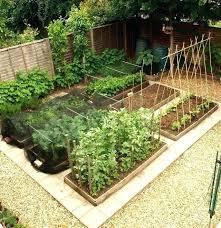 Herb Garden Layouts Small Herb Garden Layout Hydraz Club