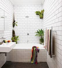 Bathroom Flowers And Plants Bathroom Appealing Awesome Plants In Bathroom Bathroom Flowers