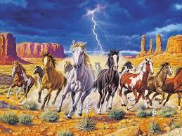 wild horses wallpaper hd animals wallpapers white wild horses