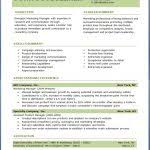 free professional resume template professional resume template free best business template free