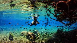 35 places to swim in the world u0027s clearest water