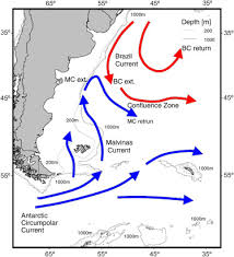 malvinas map map of the argentinean continental shelf with the warm poleward