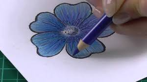colouring technique with coloured pencils flowers youtube