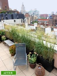 roof garden maintenance erbology