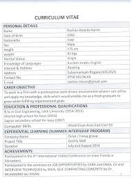 curriculum vitae layout 2013 nissan index of uploads cv