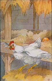 505 best chickens henny penny and family images on pinterest