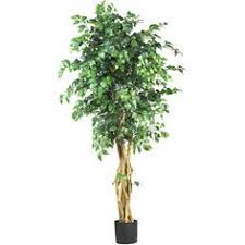 Home Decor Artificial Trees Nearly Natural 6 Ft Multi Trunk Silk Ficus Tree Ficus Tree And