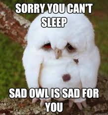 Funny Sleep Memes - funny meme sorry you can t sleep image