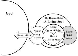 understanding human nature spirit mind