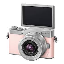 zebra pattern lumix buy panasonic lumix dc gx850 single lens kit in pink cambuy camera