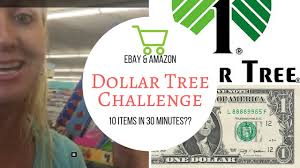 dollar tree challenge can i find 10 profitable items to sell on