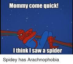 I Saw A Spider Meme - mommy come quick i think i saw a spider spidey has arachnophobia
