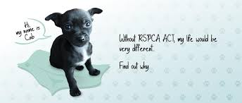 rspca act