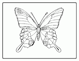 butterfly outline coloring page printable coloring sheet anbu