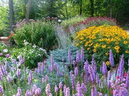 Garden Pictures Ideas Perennial Garden Ideas Hgtv