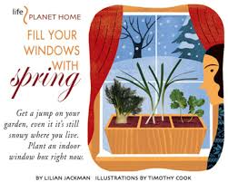 fill your windows with spring vegetarian times