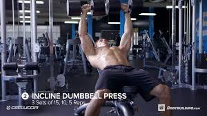 you u0027re ready to grow now do it seated bodybuilding com