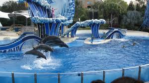 Sea World San Diego Map by Seaworld San Diego Tours From Los Angeles San Francisco Las Vegas