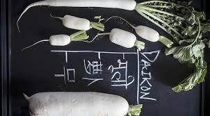 cuisiner radis blanc daikon comment se prépare et se cuisine le radis blanc