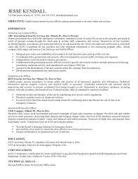 download security resume sample haadyaooverbayresort com