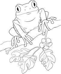 frog clipart black and white 47 cliparts