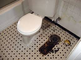 Ammonia Smell In Bathroom If Toilet Isn U0027t Sitting Pretty Air Can Be Pretty Foul Faulty