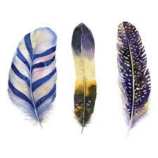 www feather missy joelle feather dark watercolour scandi art print poster