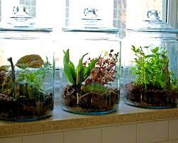 indoor herb garden planters container gardening ideas from joanna