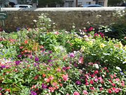 cottage garden flowers english cottage gardens rooftop gardens colorful u201ctossed u201d beds