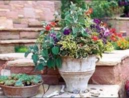 how to garden landscape plant garden design