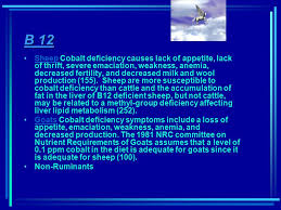 Cobalt B by Vitamins Ppt Video Online Download