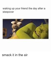 Sleepover Meme - the best memes about sleepovers mutually