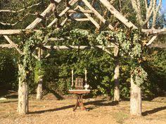 wedding arch nashville garden ceremony decor whiskey barrel arrangements white wisteria