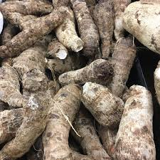 Chinese Root Vegetables - malanga information recipes and facts