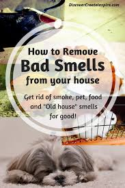 how to remove odors and clean the air in your house naturally and