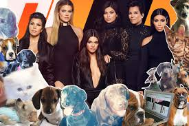 what happened to all the kardashians u0027 pets page six