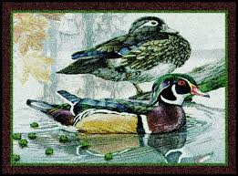94 best everything doormats wildlife area rugs mats images on