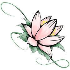 drawn lotus lotus bud pencil and in color drawn lotus lotus bud