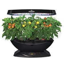 amazon com aerogarden 7 led indoor garden with gourmet herb seed