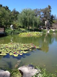 Huntington Botanical Garden by The Huntington Library Art Collections And Botanical Gardens
