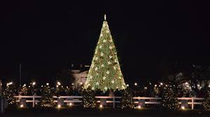 Christmas Tree Cataract Surgery by Contact Christmas Fm Christmas Fm