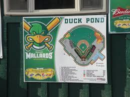 Mallards Duck Blind Musings From America U0027s Dairyland Madison Mallards